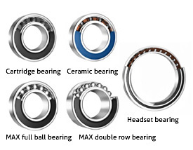 Selection by bearing model
